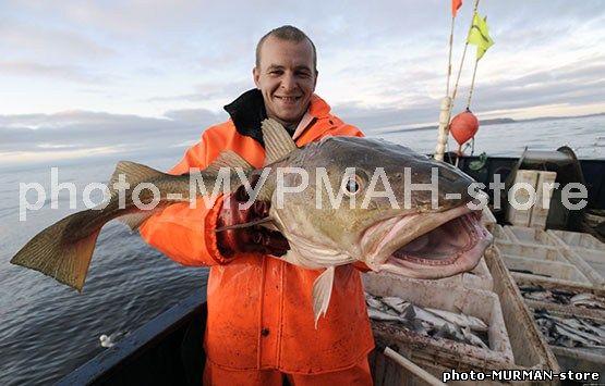 страны лидирующие по ловле рыбы